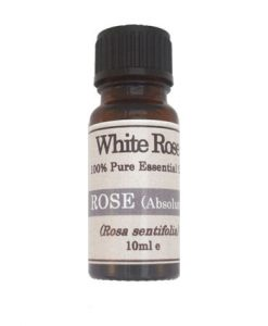 Rose Absolute (Rosa sentifolia) 100% Pure Cosmetic Grade Essential Oil