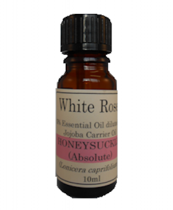 5% Diluted Honeysuckle Absolute Essential Oil