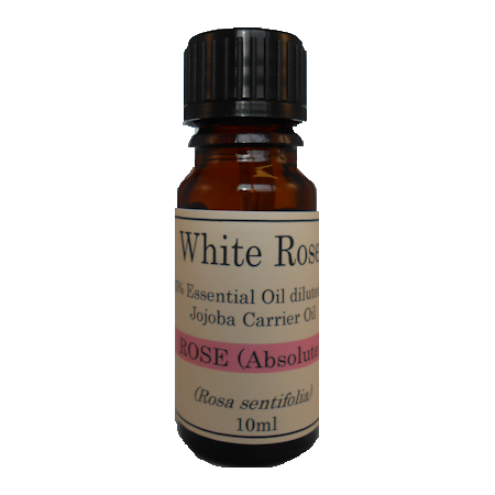 5% Diluted Rose Absolute (Rosa damascena) Essential Oil